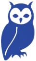 How Wise Then blue owl icon