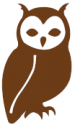 How Wise Then brown owl