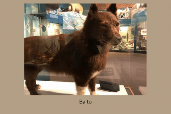 Balto - How Wise Then